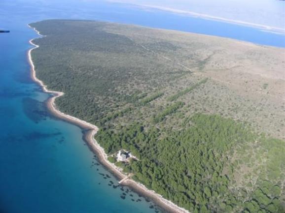 Vir sziget