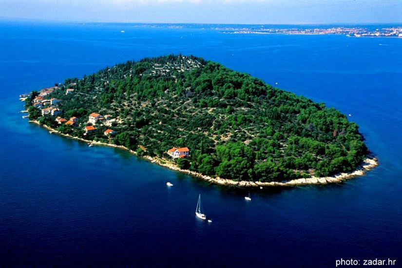 island Osljak