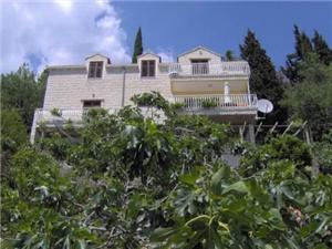 Apartmán Niko Dubrovnik, Prostor 100,00 m2, Vzdušní vzdálenost od centra místa 300 m