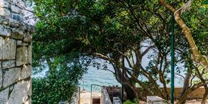Dom - Necujam - ostrov Solta