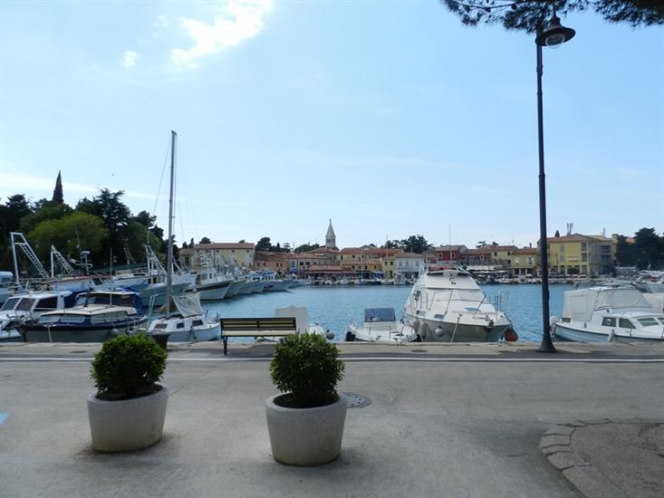 Blue Istria