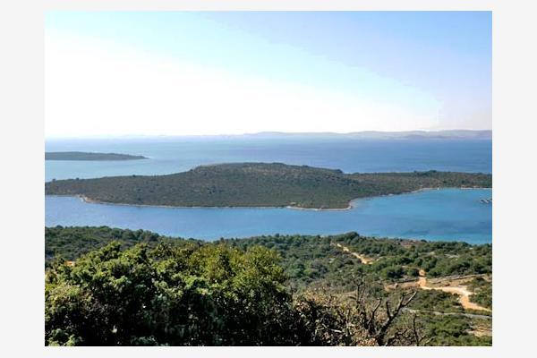 Zizanj - Zizanj sziget