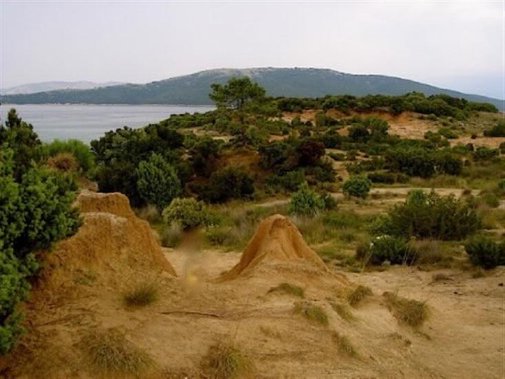 Lopar - wyspa Rab