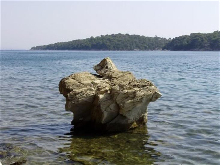 Palit - wyspa Rab