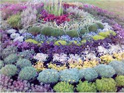 La Mostra Nazionale dei Fiori Floraart  Fiera del paese