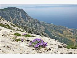 Mount Biokovo Zaglav - island Korcula