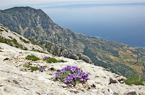 Montagne Biokovo