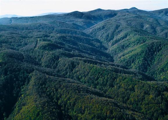 Papuk (il monte della Slavonia)