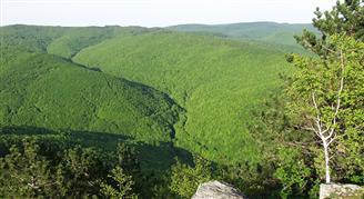 Természetvédelmi terület Papuk (Slavonian highlands)