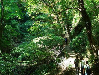 Park prírody Medvednica (pohorie v okolí Záhreba)