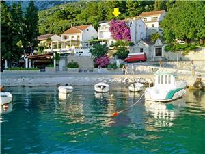 Ferienwohnung Ksenija Drvenik, Größe 60,00 m2, Luftlinie bis zum Meer 50 m, Entfernung vom Ortszentrum (Luftlinie) 70 m
