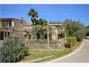 Appartamenti e Camere Valter l'Istria Blu, Dimensioni 15,00 m2, Distanza aerea dal centro città 100 m