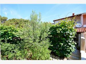 Počitniške hiše Modra Istra,Rezerviraj Blagoje Od 98 €