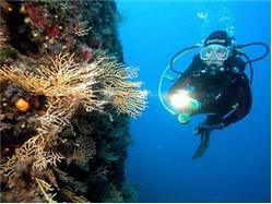 Split, Trogir: Half day snorkeling  Necujam - wyspa Solta