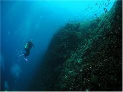 Split, Trogir: Snorkeling (private tour) Drvenik Mali - île de Drvenik Mali