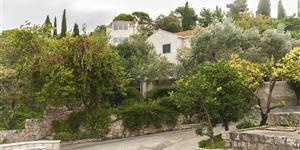 Апартаменты - Cavtat