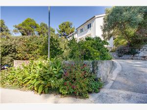 Apartmaji Lela Mali Losinj - otok Losinj,Rezerviraj Apartmaji Lela Od 62 €