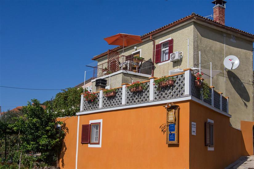 Apartamenty Tasha