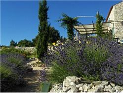 Losinjs aromatiska trädgård Mali Losinj - ön Losinj Sights