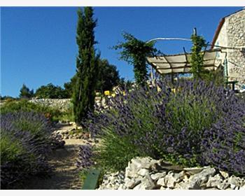 Losinjs aromatiska trädgård