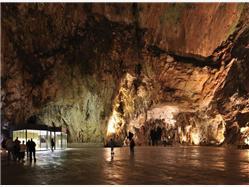 Discover beautiful Postojna Caves Lipizzaner Horses from Istra Cervar - Porat (Porec)