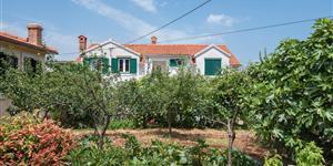 Appartamento - Supetar - isola di Brac