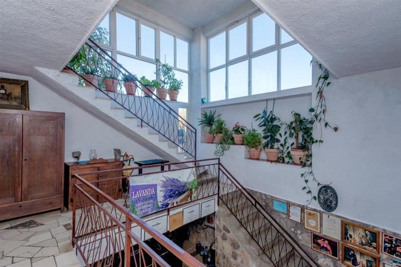 Apartmaji Nediljka