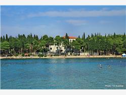 Vela Luka Mirca - island Brac Plaža
