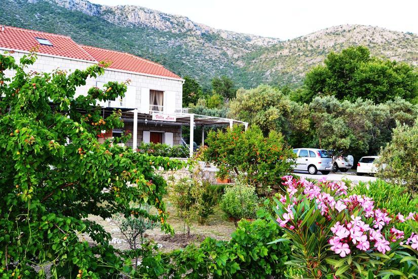 Dům Lina