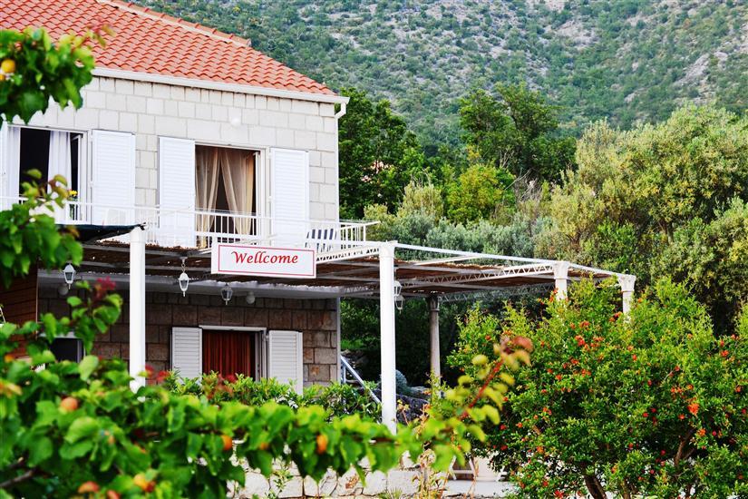 House Lina