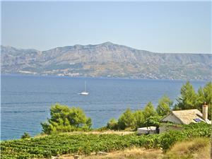 Ubytování u moře Krunoslav Supetar - ostrov Brac,Rezervuj Ubytování u moře Krunoslav Od 2254 kč