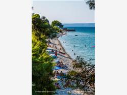 Duba pelješka  Plaža