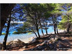 Divlja Plaža Benkovac Plaža
