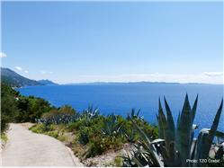 Podobuće Pomena - Mljet sziget Plaža