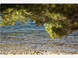 Srebrena uvala  Plaža