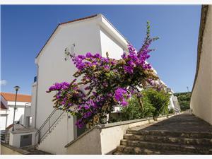 Apartmán Tatjana Necujam - ostrov Solta, Prostor 50,00 m2, Vzdušní vzdálenost od moře 150 m, Vzdušní vzdálenost od centra místa 50 m