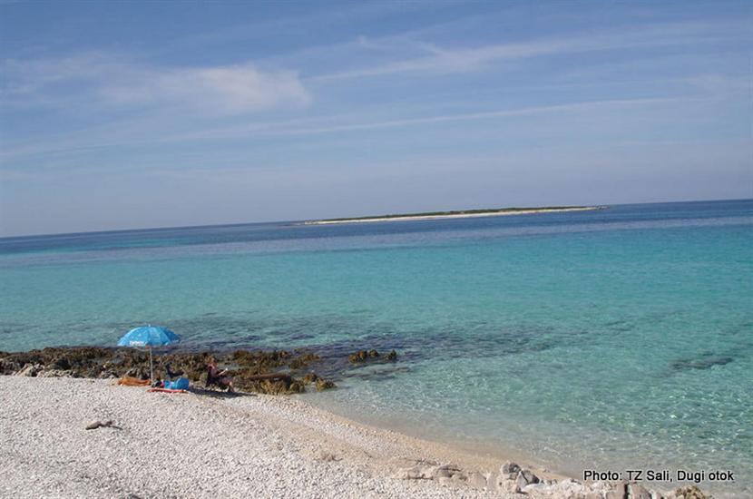 Veli Žal-Brbinj (Dugi otok)