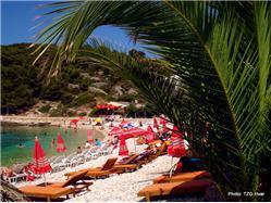 Pokonji Dol Zarace - island Hvar Plaža