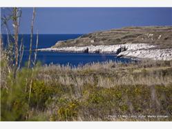 Obis (Ambisi) Susak - ön Susak Plaža