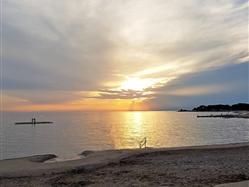 Pinna Tar (Poreč) Plaža