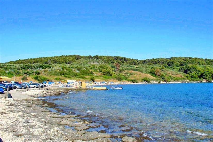 Vela Pržina-Lumbarda (otok Korčula)