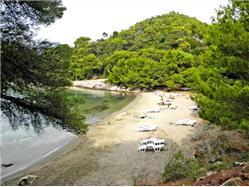 Blaće Kozarica - ostrov Mljet Plaža