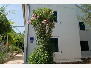 Beachfront accommodation North Dalmatian islands,Book Tanja From 130 €