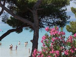 Slanica  Plaža