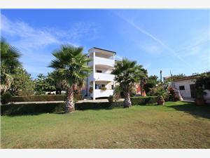 Ana Pomer Modrá Istria, Rozloha 15,00 m2, Vzdušná vzdialenosť od centra miesta 300 m