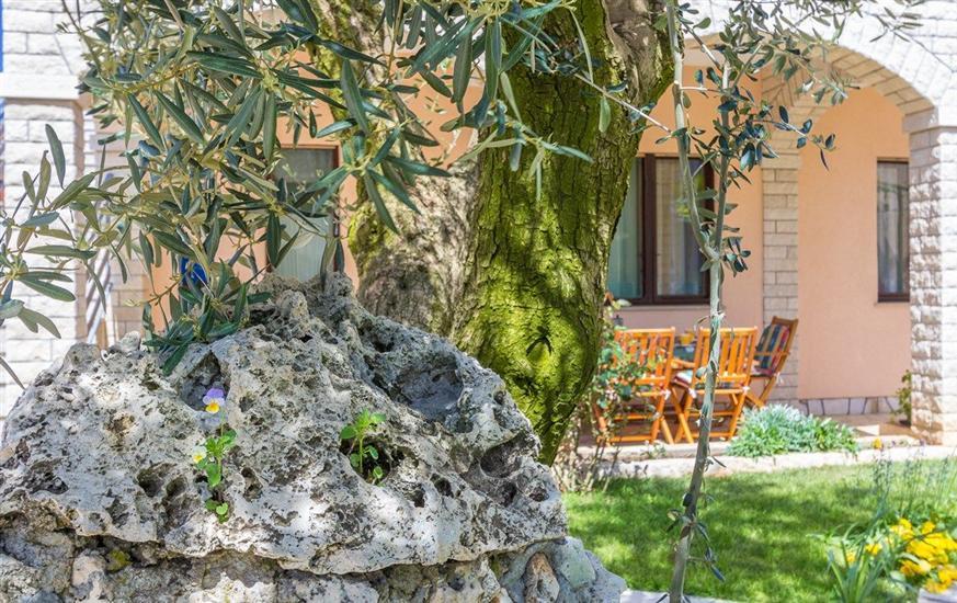 Ferienwohnung Casa Valmade