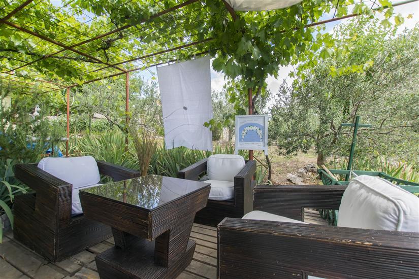 House Green Paradise