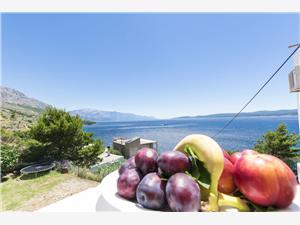 Ferienwohnungen Dalmatia Lokva Rogoznica,Buchen Ferienwohnungen Dalmatia Ab 97 €