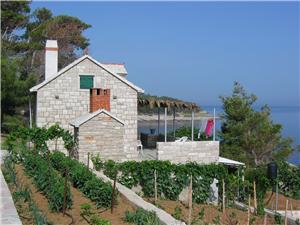 Beachfront accommodation Middle Dalmatian islands,Book Svjetlana From 104 €
