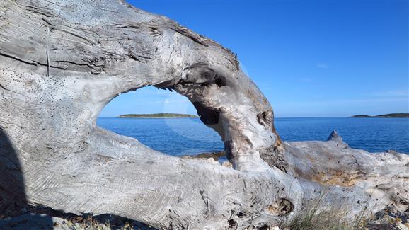 eiland Vis
